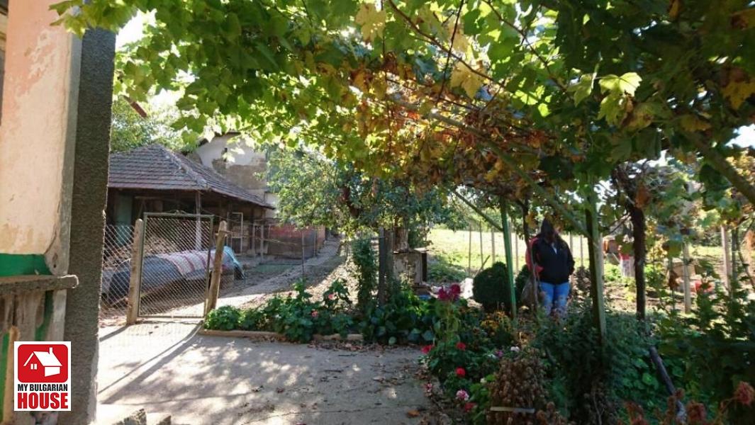 Sommerküche Garten : Haus in lom für 8 200 eur constanta ltd.